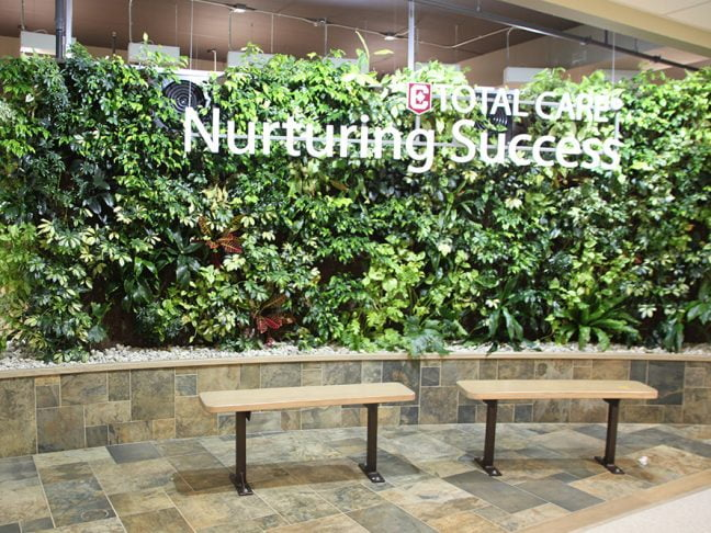 Columbia College Living Wall