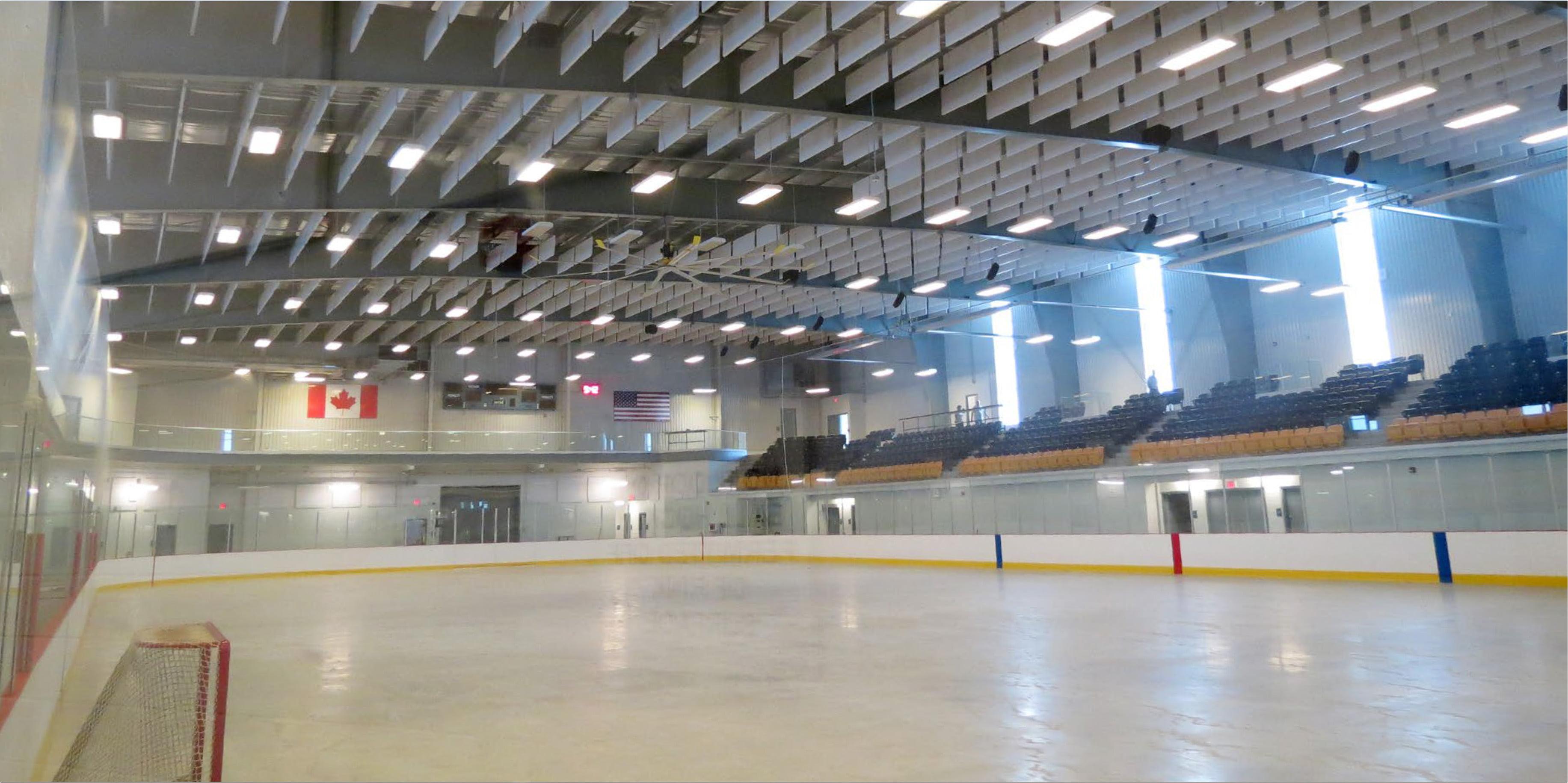 fleming hockey arena