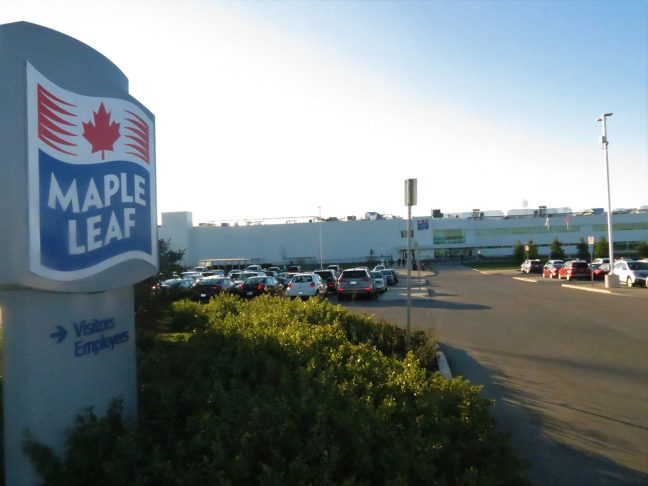 Maple Leaf Parking Systems